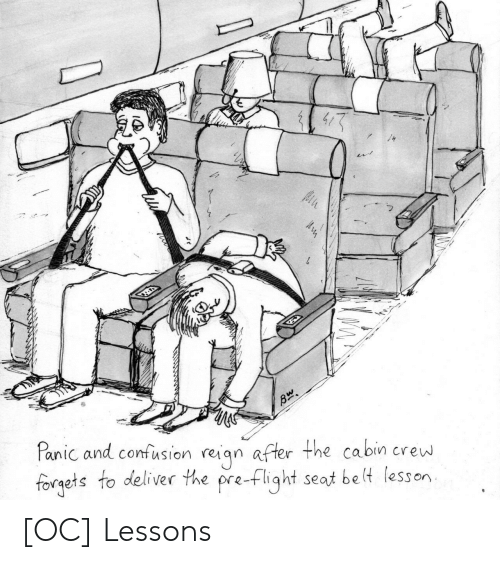 deliver: Panic and confusion reiqn after the cabin crew  forgets to deliver the pre-flight seat be lt lesson [OC] Lessons