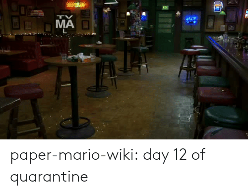 day-12: paper-mario-wiki: day 12 of quarantine