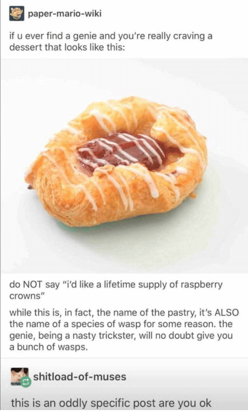"""are you ok: paper-mario-wiki  if u ever find a genie and you're really craving a  dessert that looks like this:  do NOT say """"i'd like a lifetime supply of raspberry  crowns""""  while this is, in fact, the name of the pastry, it's ALSO  the name of a species of wasp for some reason. the  genie, being a nasty trickster, will no doubt give you  a bunch of wasps.  shitload-of-muses  this is an oddly specific post are you ok"""
