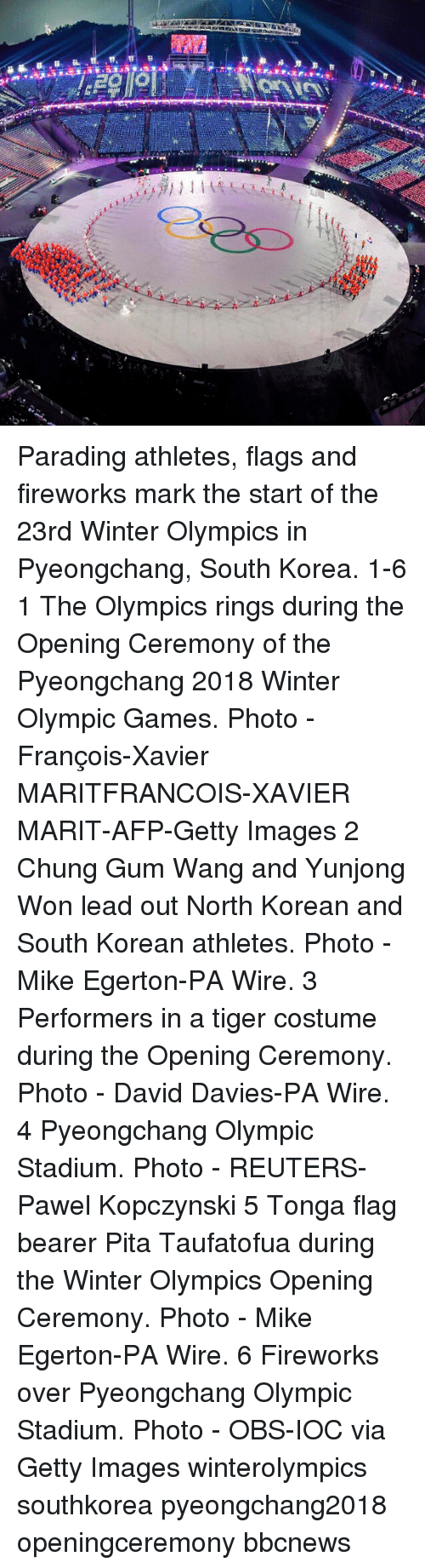 Memes, Winter, and Fireworks: Parading athletes, flags and fireworks mark the start of the 23rd Winter Olympics in Pyeongchang, South Korea. 1-6 1 The Olympics rings during the Opening Ceremony of the Pyeongchang 2018 Winter Olympic Games. Photo - François-Xavier MARITFRANCOIS-XAVIER MARIT-AFP-Getty Images 2 Chung Gum Wang and Yunjong Won lead out North Korean and South Korean athletes. Photo - Mike Egerton-PA Wire. 3 Performers in a tiger costume during the Opening Ceremony. Photo - David Davies-PA Wire. 4 Pyeongchang Olympic Stadium. Photo - REUTERS-Pawel Kopczynski 5 Tonga flag bearer Pita Taufatofua during the Winter Olympics Opening Ceremony. Photo - Mike Egerton-PA Wire. 6 Fireworks over Pyeongchang Olympic Stadium. Photo - OBS-IOC via Getty Images winterolympics southkorea pyeongchang2018 openingceremony bbcnews