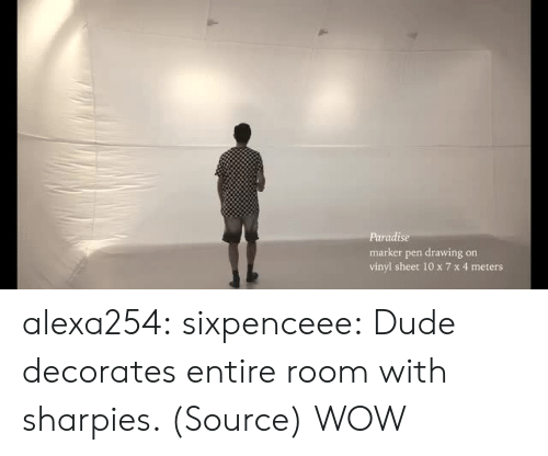 vinyl: Paradise  marker pen drawing on  vinyl sheet 10 x 7 x 4 meters alexa254:  sixpenceee:  Dude decorates entire room with sharpies. (Source)  WOW