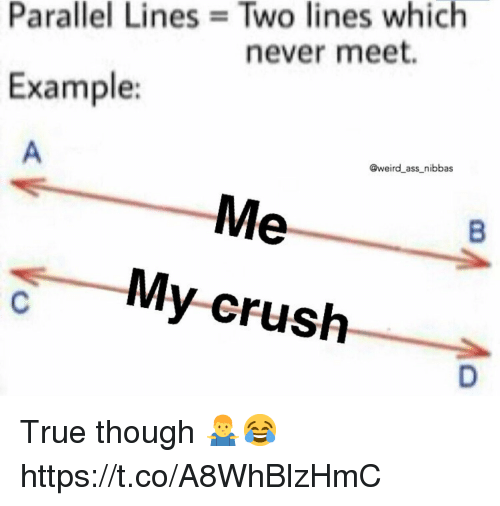 Ass, Crush, and True: Parallel Lines Two lines which  never meet.  Example:  @weird ass nibbas  My-crush True though 🤷♂️😂 https://t.co/A8WhBlzHmC