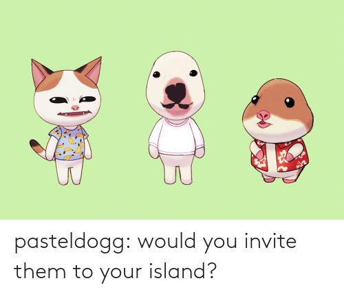 island: pasteldogg:  would you invite them to your island?
