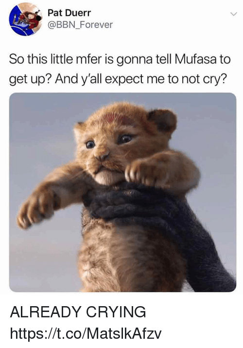 Crying, Funny, and Mufasa: Pat Duerr  @BBN Forever  So this little mfer is gonna tell Mufasa to  get up? And y'all expect me to not cry? ALREADY CRYING https://t.co/MatslkAfzv