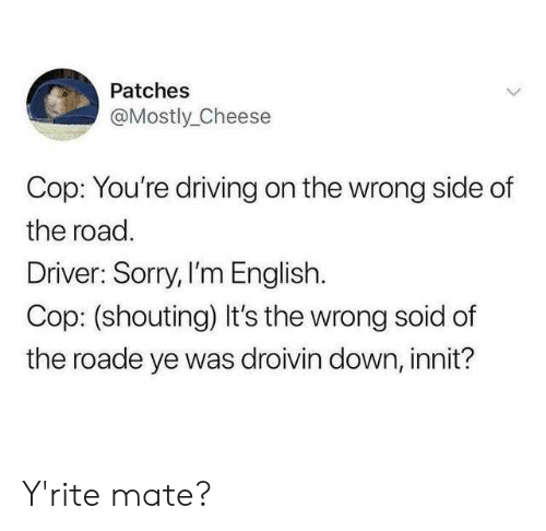shouting: Patches  @Mostly_Cheese  Cop: You're driving on the wrong side of  the road.  Driver: Sorry, I'm English.  Cop: (shouting) It's the wrong soid of  the roade ye was droivin down, innit? Y'rite mate?