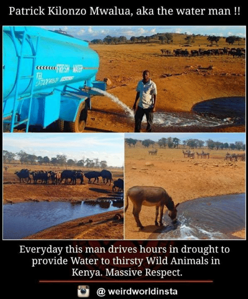 Animals, Memes, and Respect: Patrick Kilonzo Mwalua, aka the water man!!  Everyday this man drives hours in drought to  provide Water to thirsty Wild Animals in  Kenya. Massive Respect.  @ weirdworldinsta