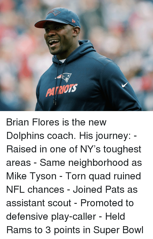 flores: PATRIOTS Brian Flores is the new Dolphins coach.  His journey: - Raised in one of NY's toughest areas - Same neighborhood as Mike Tyson - Torn quad ruined NFL chances - Joined Pats as assistant scout - Promoted to defensive play-caller - Held Rams to 3 points in Super Bowl