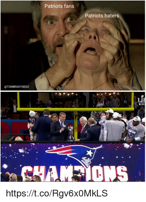 Patriotic, Tom Brady, and Haters: Patriots fans  Patriots haters  @TOMBRADYSEGO  91  CB https://t.co/Rgv6x0MkLS