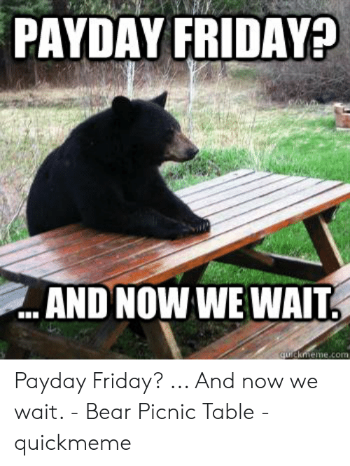 Friday, Bear, and Payday: PAYDAY FRIDAY?  AND NOW WE WAIT  eme.com Payday Friday? ... And now we wait. - Bear Picnic Table - quickmeme
