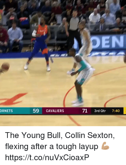 Memes, Cavaliers, and Tough: PEN  59 CAVALIERS  71 3rd Qtr 7:40  ORNETS The Young Bull, Collin Sexton, flexing after a tough layup 💪🏽  https://t.co/nuVxCioaxP
