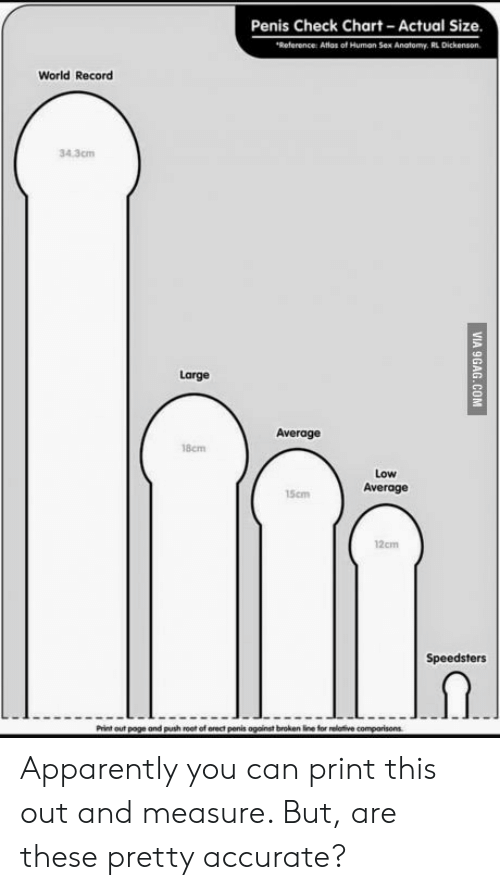 Poge: Penis Check Chart Actual Size  Reference: Atlos of Human Sex Anatomy. RL Dickenson  World Record  34.3cm  Large  Average  18cm  Low  Average  15cm  12cm  Speedsters  Print out poge and push root of orect penis against broken fine for relative Apparently you can print this out and measure. But, are these pretty accurate?