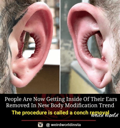 Memes, 🤖, and New: People Are Now Getting Inside Of Their Ears  Removed In New Body Modification Trend  The procedure is called a conch rggngyalortd  @ weirdworldinsta