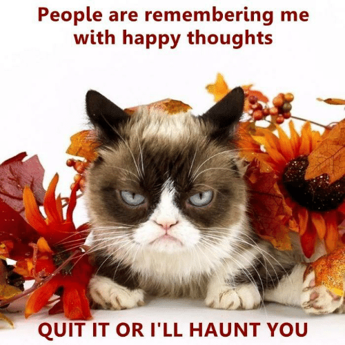 haunt: People are remembering me  with happy thoughts  QUIT IT OR I'LL HAUNT YOU