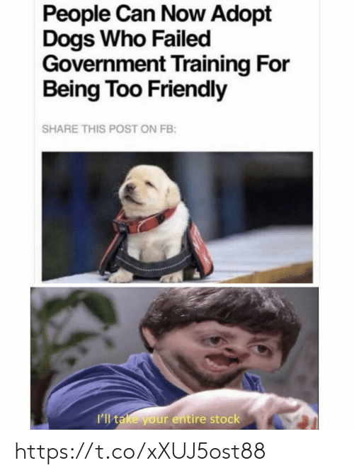 Dogs, Memes, and Government: People Can Now Adopt  Dogs Who Failed  Government Training For  Being Too Friendly  SHARE THIS POST ON FB:  I'll take your entire stock https://t.co/xXUJ5ost88