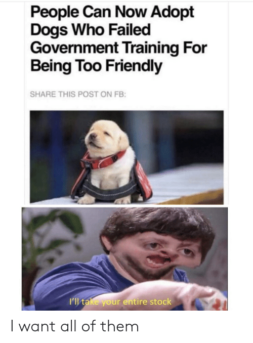 Dogs, Government, and Who: People Can Now Adopt  Dogs Who Failed  Government Training For  Being Too Friendly  SHARE THIS POST ON FB:  I'l take your entire stock I want all of them