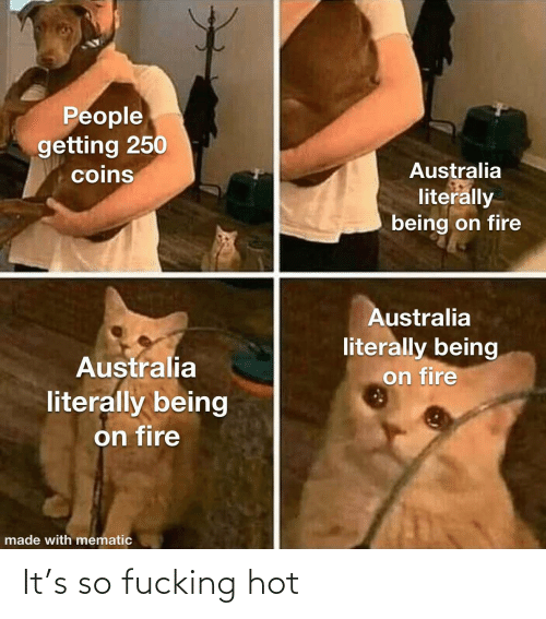 coins: People  getting 250  coins  Australia  literally  being on fire  Australia  literally being  on fire  Australia  literally being  on fire  made with mematic It's so fucking hot