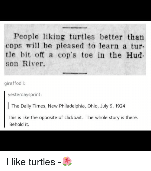Memes, Ohio, and Philadelphia: People liking turtles better than  cops wi be pleased to learn a tur  tle bit off a cop's toe in the Hud-  son River.  giraffodil:  yesterdaysprint:  The Daily Times, New Philadelphia, Ohio, July 9, 1924  This is like the opposite of clickbait. The whole story is there.  Behold it. I like turtles -🌺