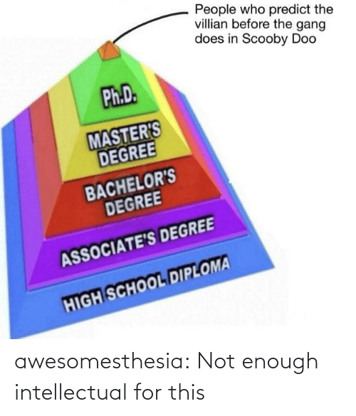 scooby: People who predict the  villian before the gang  does in Scooby Doo  Ph.D.  MASTER'S  DEGREE  BACHELOR'S  DEGREE  ASSOCIATE'S DEGREE  HIGH SCHOOL DIPLOMA awesomesthesia:  Not enough intellectual for this