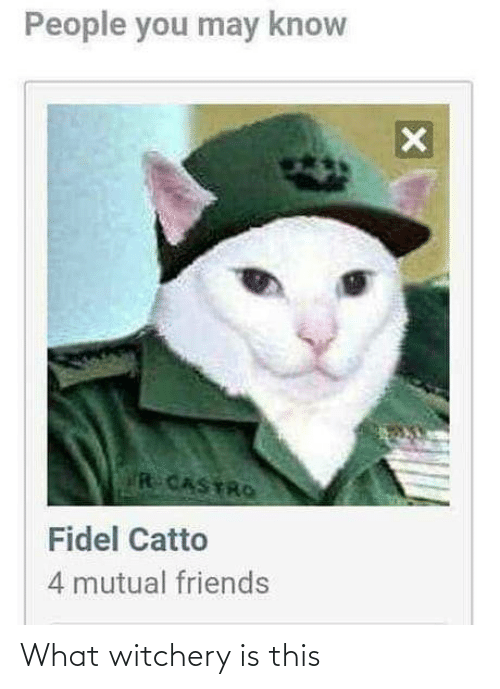 Is This: People you may know  R CASTRO  Fidel Catto  4 mutual friends What witchery is this