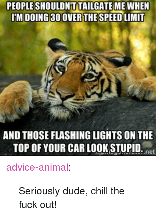 """Advice, Chill, and Dude: PEOPLESHOULDN T TAILGATE MEWHEN  IM DOING 30 OVERTHE SPEED LIMIT  AND THOSE FLASHING LIGHTS ON THE  TOP OF YOUR CAR LOOK STUPID. net <p><a href=""""http://advice-animal.tumblr.com/post/174065973596/seriously-dude-chill-the-fuck-out"""" class=""""tumblr_blog"""">advice-animal</a>:</p>  <blockquote><p>Seriously dude, chill the fuck out!</p></blockquote>"""