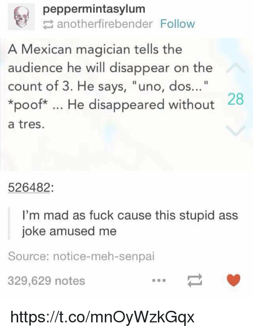 """Poofes: peppermintasylum  anotherfirebender Follow  A Mexican magician tells the  audience he will disappear on the  count of 3. He says, """"uno, dos...""""  *poof*. He disappeared without  a tres.  28  526482:  I'm mad as fuck cause this stupid ass  joke amused me  Source: notice-meh-senpai  329,629 notes https://t.co/mnOyWzkGqx"""