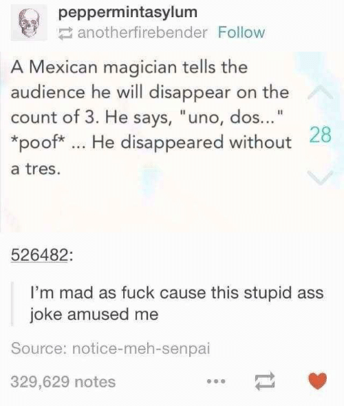 """meh: peppermintasylum  anotherfirebender Follow  A Mexican magician tells the  audience he will disappear on the  count of 3. He says, """"uno, dos...""""  *poof* He disappeared without 28  a tres.  526482:  I'm mad as fuck cause this stupid ass  joke amused me  Source: notice-meh-senpai  329,629 notes"""