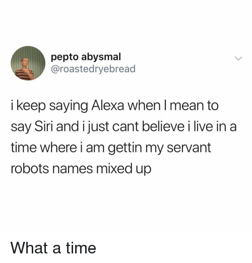 Funny, Siri, and Live: pepto abysmal  @roastedryebread  i keep saying Alexa when I mean to  say Siri and i just cant believe i live in a  time where i am gettin my servant  robots names mixed up What a time