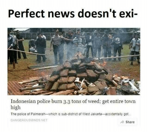 Indonesian: Perfect news doesn't exi-  Indonesian police burn 3.3 tons of weed; get entire town  high  The police of Palmerah-which is sub-district of West Jakarta-accidentally got  DANGEROUSMINDS NET  Share