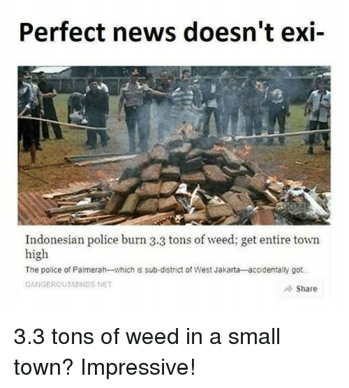 Indonesian: Perfect news doesn't exi-  Indonesian police burn 3.3 tons of weed; get entire town  high  The police of Palmerah-which is sub-district of West Jakarta-accidentally got  DANGEROUSMINDS NET  Share 3.3 tons of weed in a small town? Impressive!
