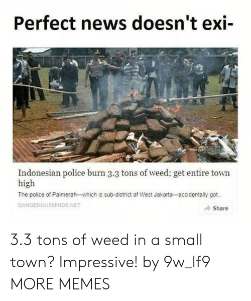 Indonesian: Perfect news doesn't exi-  Indonesian police burn 3.3 tons of weed; get entire town  high  The police of Palmerah-which is sub-district of West Jakarta-accidentally got  DANGEROUSMINDS NET  Share 3.3 tons of weed in a small town? Impressive! by 9w_lf9 MORE MEMES