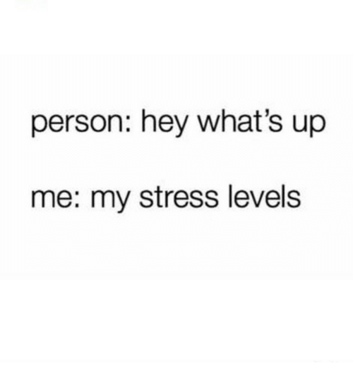 Stress, Level, and Person: person: hey what's up  me: my stress level:s