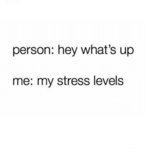 Stress, Person, and Whats: person: hey what's up  me: my stress levels