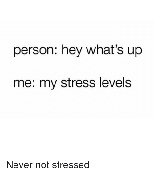 Memes, Never, and 🤖: person: hey what's up  me: my stress levels Never not stressed.