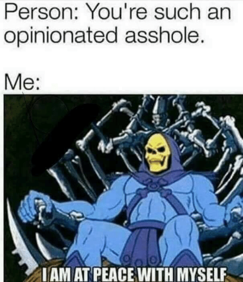 Peace, Asshole, and Person: Person: You're such an  opinionated asshole.  Me:  IAM AT PEACE WITH MYSELF