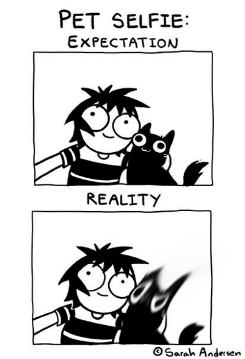 expectation: PET SELFIE:  EXPECTATION  REALITY  OSarah Andersen