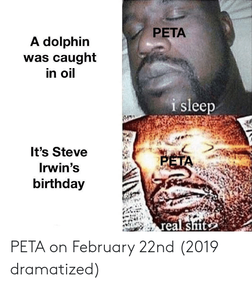 Birthday, Shit, and Peta: PETA  A dolphin  was caught  in oil  I sleep  It's Steve  Irwin's  birthday  PET  eal shit PETA on February 22nd (2019 dramatized)