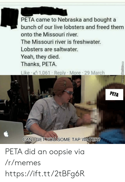 Memes, Yeah, and Peta: PETA came to Nebraska and bought a  bunch of our live lobsters and freed them  onto the Missouri river.  The Missouri river is freshwater.  Lobsters are saltwater.  Yeah, they died.  Thanks, PETA.  PETA  CAN I GET YOU SOME TAP WATER PETA did an oopsie via /r/memes https://ift.tt/2tBFg6R