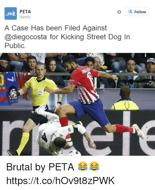 Soccer, Peta, and Been: PETA  @peta  Follow  A Case Has been Filed Against  @diegocosta for Kicking Street Dog In  Public Brutal by PETA 😂😂 https://t.co/hOv9t8zPWK