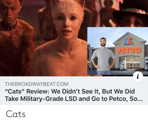 """Military Grade: PETCO  THEBROADWAYBEAT.COM  """"Cats"""" Review: We Didn't See It, But We Did  Take Military-Grade LSD and Go to Petco, So... Cats"""