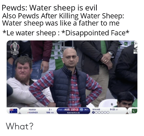 cricket world cup: Pewds: Water sheep is evil  Also Pewds After Killing Water Sheep:  Water sheep was like a father to me  *Le water sheep *Disappointed Face*  501  LIV  ICC CRICKET  WORLD CUP  2019  PAK v AUS 237-3 P2 36.1  0-23 4.1  WAHAB  MARSH  3 7  e00000  106 106  WARNER  RUN RATE 6.55 What?