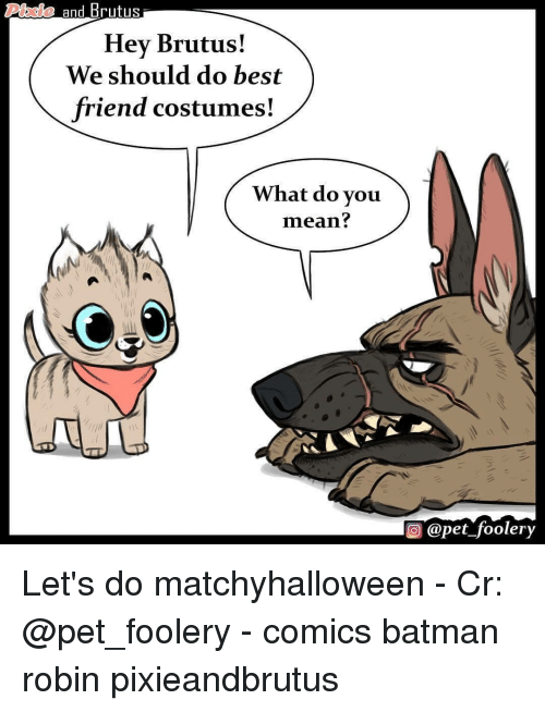 Batman, Best Friend, and Memes: Phaie and Brutus  Hey Brutus!  We should do best  friend costumes!  What do vou  mean?  ) @pet_foolery Let's do matchyhalloween - Cr: @pet_foolery - comics batman robin pixieandbrutus