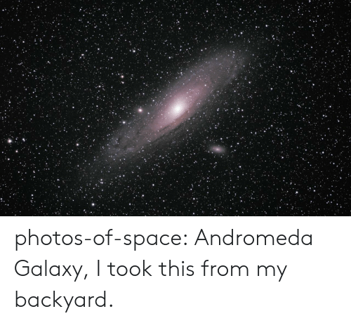 galaxy: photos-of-space:  Andromeda Galaxy, I took this from my backyard.