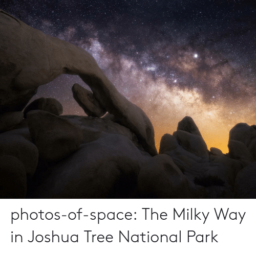 Milky Way: photos-of-space:  The Milky Way in Joshua Tree National Park