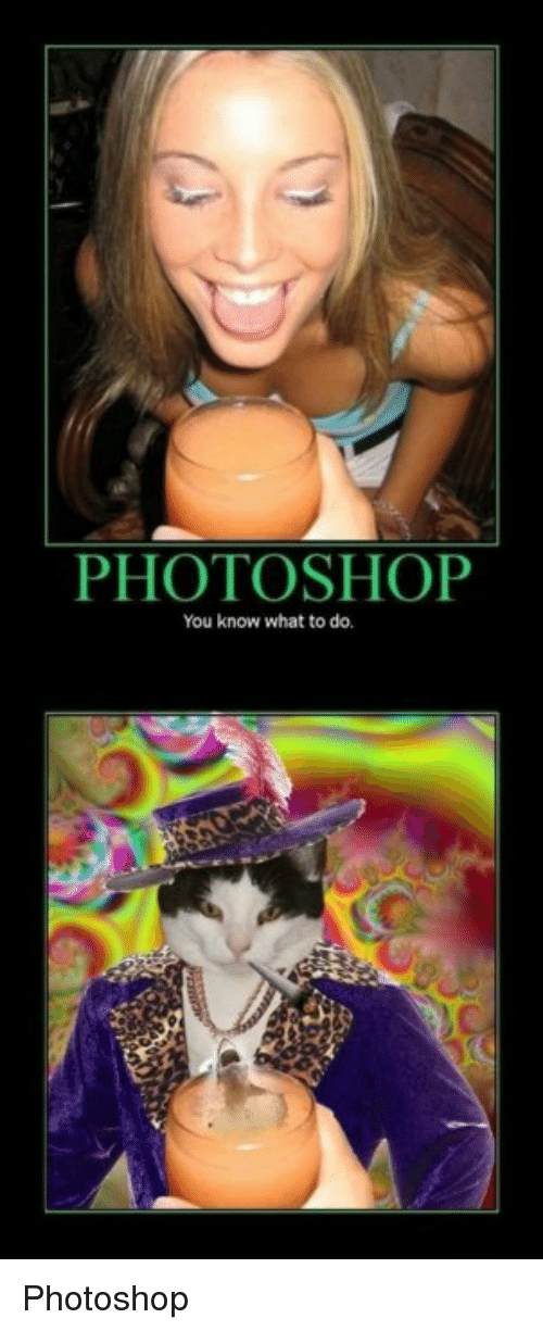 Funny, Photoshop, and Cake: PHOTOSHOP  You know what to do. Photoshop