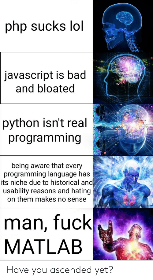 programming language: php sucks lol  javascript is bad  and bloated  python isn't real  programming  being aware that every  programming language has  its niche due to historical and  usability reasons and hating  on them makes no sense  man, fuck  MATLAB Have you ascended yet?