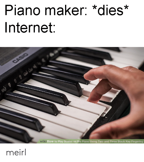 Internet, Fingering, and Black: Piano maker: *dies*  Internet  wi  ki How to Play Scales on the Piano Using Two and Three Black Key Fingering meirl