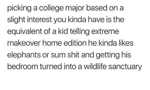 College, Shit, and Home: picking a college major based on a  slight interest you kinda have is the  equivalent of a kid telling extreme  makeover home edition he kinda likes  elephants or sum shit and getting his  bedroom turned into a wildlife sanctuary