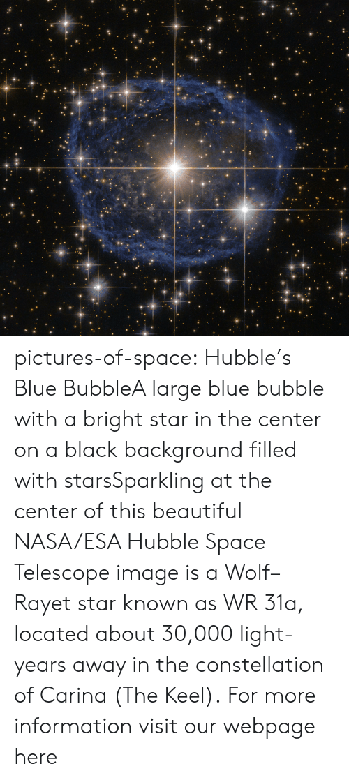 Beautiful, Nasa, and Tumblr: pictures-of-space:    Hubble's Blue BubbleA large blue bubble with a bright star in the center on a black background filled with starsSparkling at the center of this beautiful NASA/ESA Hubble Space Telescope image is a Wolf–Rayet star known as WR 31a, located about 30,000 light-years away in the constellation of Carina (The Keel).  For more information visit our webpage here