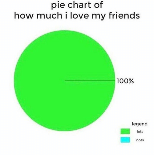 Pied: pie chart of  how much i love my friends  100%  legend  lots  nots