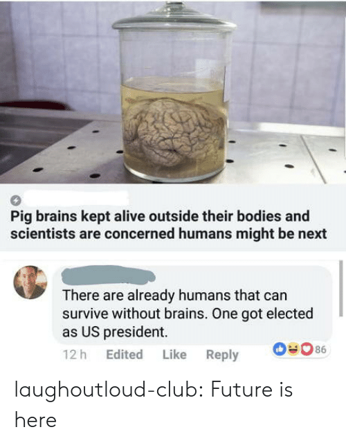 us president: Pig brains kept alive outside their bodies and  scientists are concerned humans might be next  There are already humans that can  survive without brains. One got elected  as US president  12 h Edited Like Reply laughoutloud-club:  Future is here